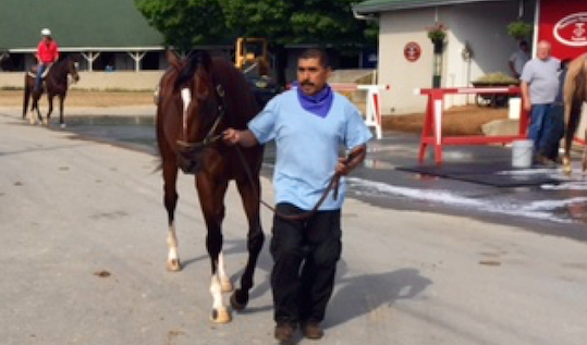Bluegrass Stakes winner Brody's Cause looks like the best stallion prospect in Derby 142.