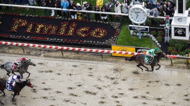 Exaggerator beats Nyquist (3) and Cherry Wine to the wire in the Preakness Stakes. (AP photo)
