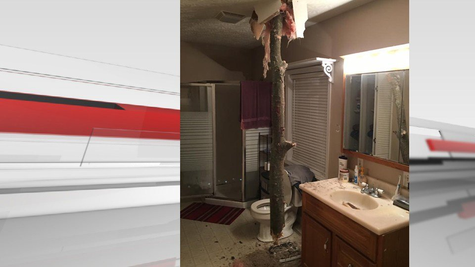 A tree limb came crashing through the bathroom ceiling of a home in Austin, Indiana during storms on March 1, 2017. (credit: Rob Bowling)