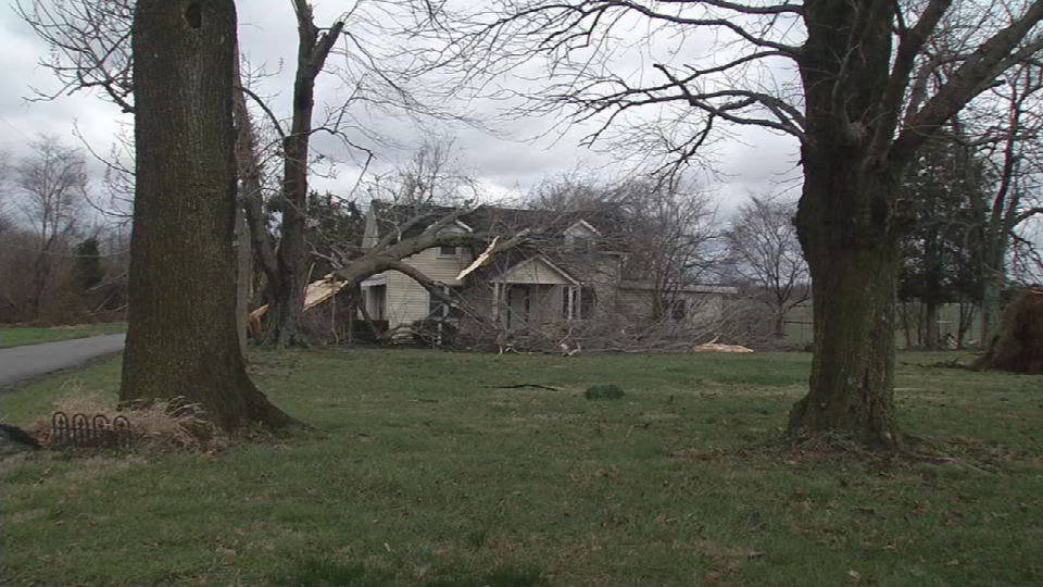 Trees fall on home in Austin.