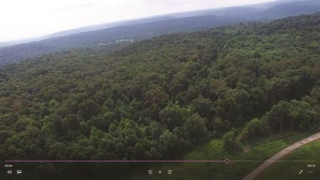 The 'Big Level' area purchased by Bernheim Forest.