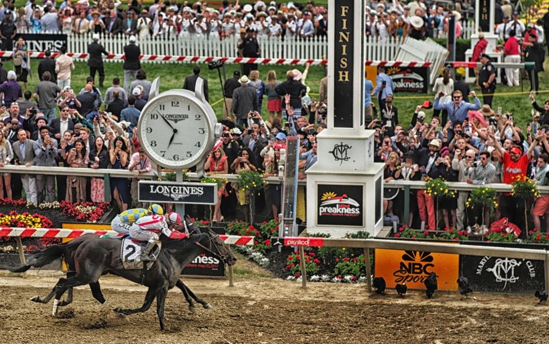 Cloud Computing beat Classic Empire at the wire to win the Preakness Saturday.  (Jon Kral photo.)