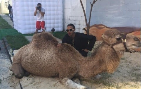 Mom Spends $25000 on Camel, Sand, and Exotic Cars for Son's Prom
