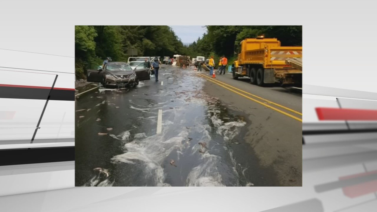 Slithery cleanup on Oregon highway after truck full of eels overturns