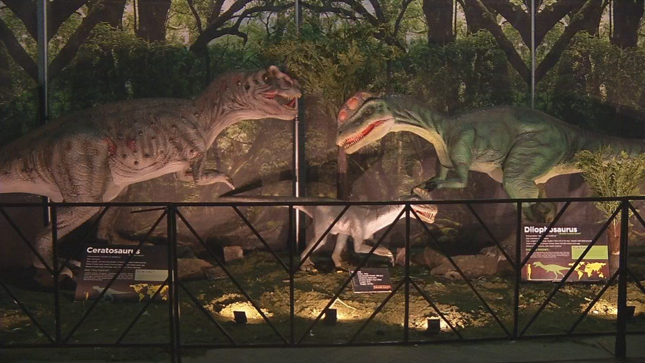 Families can check out more than 80 exhibits and life-sized dinosaurs.