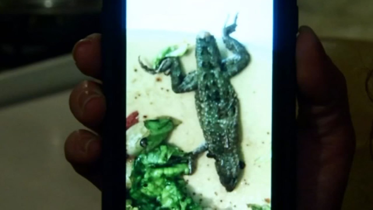 Michelle Carr says she found a dead lizard in her bag of romaine lettuce, and she took a picture of it. She says she made the discovery when she bit into her salad.