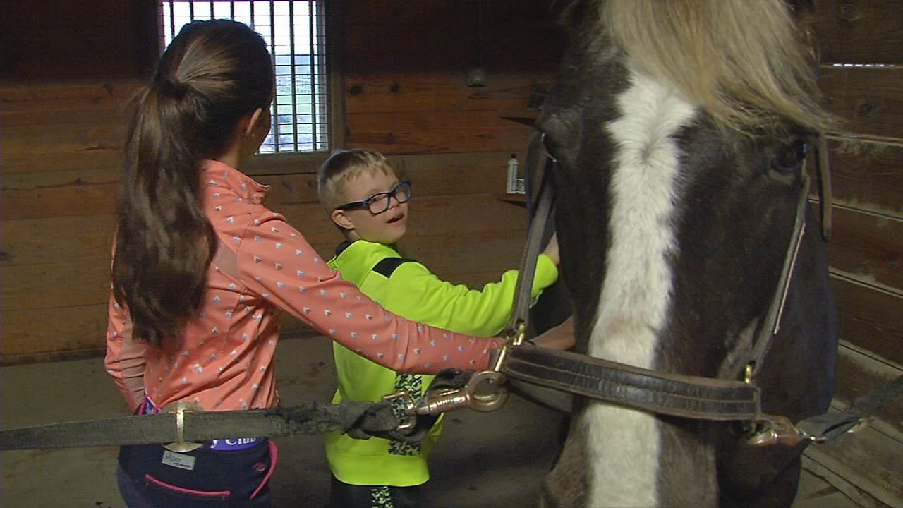 Operation Open Arms gave foster children a chance to experience a horse stable.