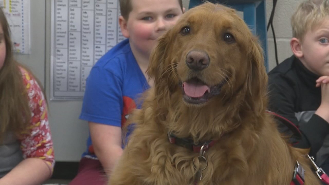 A dog in Kentucky helps kids get over their fear of going to the dentist.