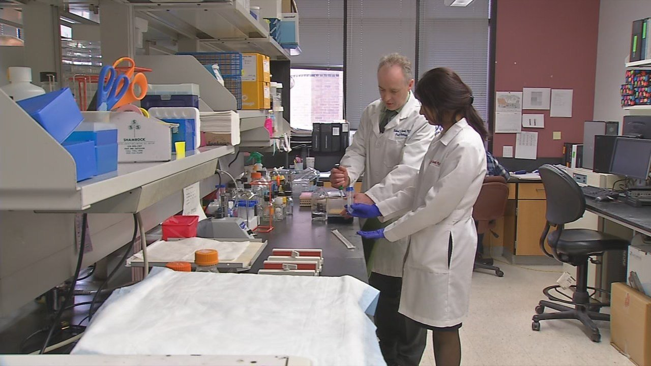 The University of Louisville is on the front lines of battling diseases that harm family members and take lives -- and now a new federal grant will help in the fight.