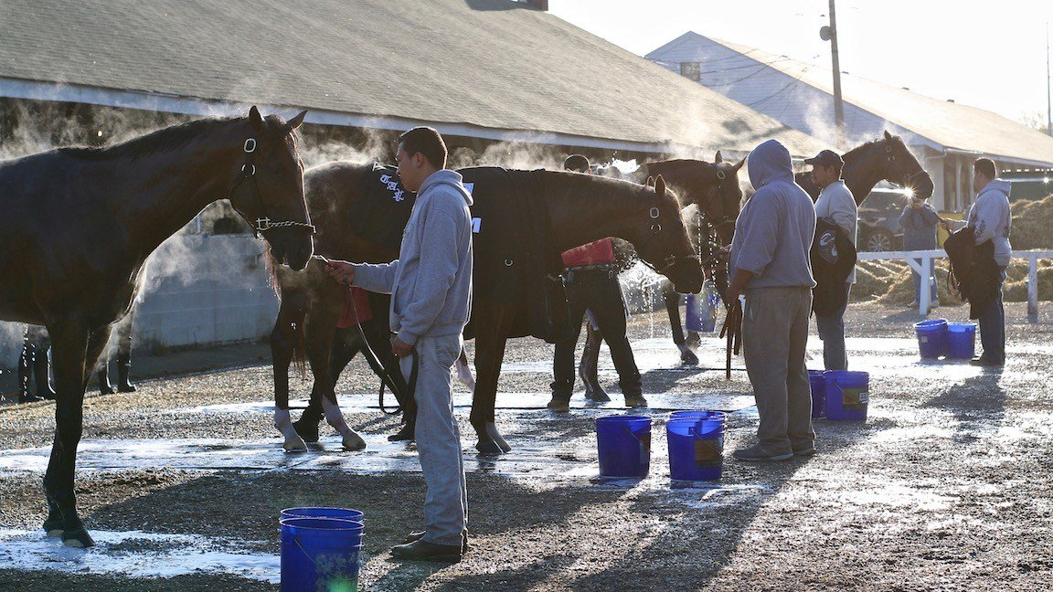 The usual crowd gathers at the Pletcher barn during a recent morning of training. (WDRB photo by Eric Crawford)