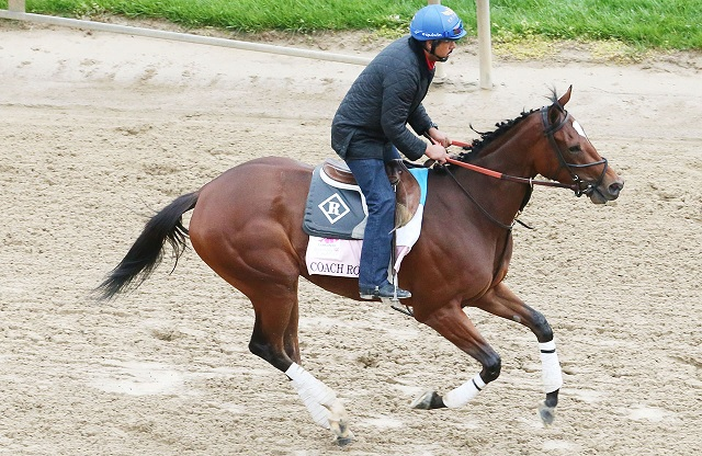 Oaks entry Coach Rocks is owned in part by Rick Pitino. (courtesy Coady Photography)