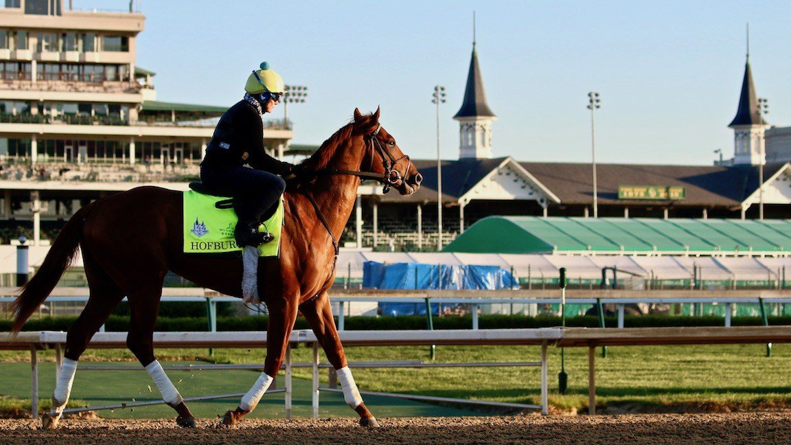 The Bill Mott-trained Hofburg trains at Churchill Downs. (WDRB photo by Eric Crawford)