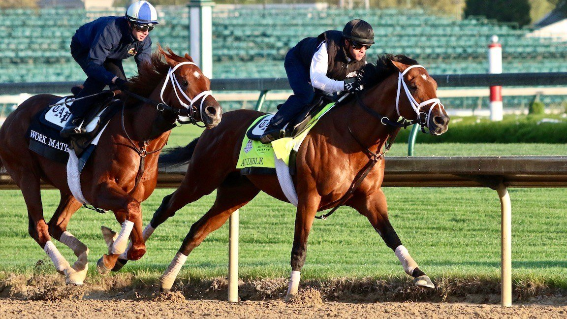The Todd Pletcher-trained Audible works with a stablemate (WDRB photo by Eric Crawford)