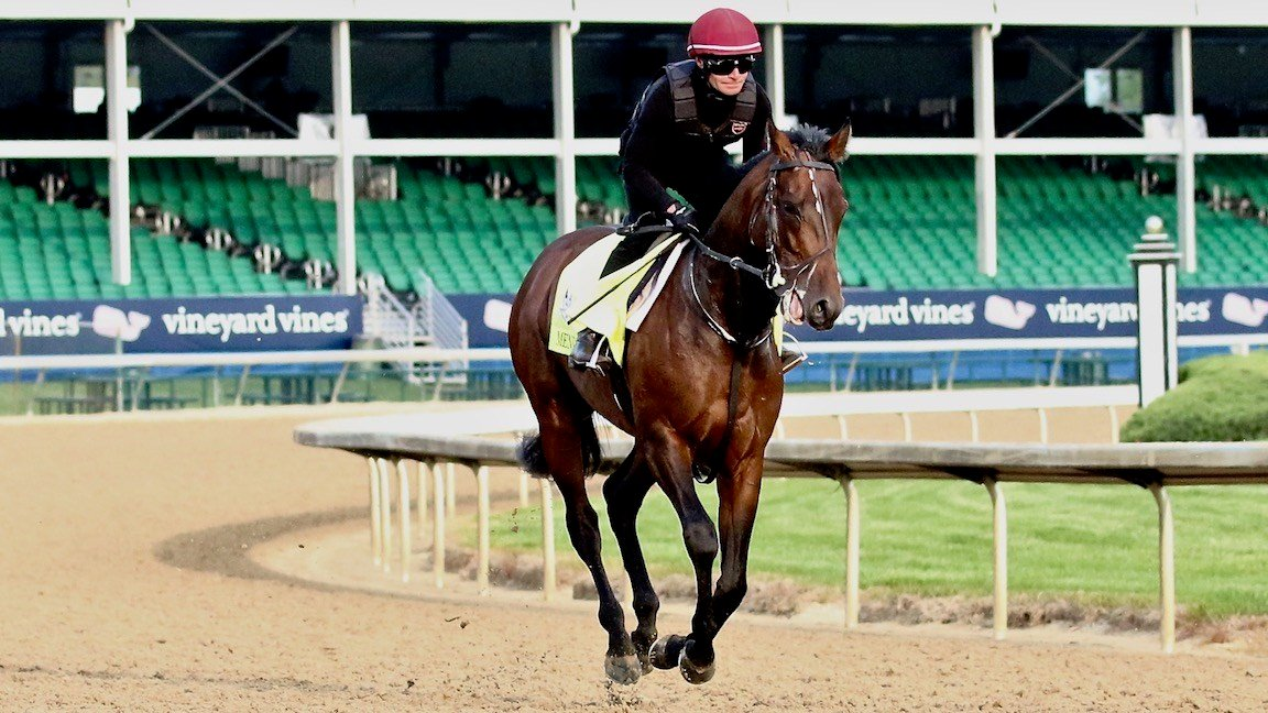 Mendelssohn gallops on the Churchill Downs track (WDRB photo by Eric Crawford)