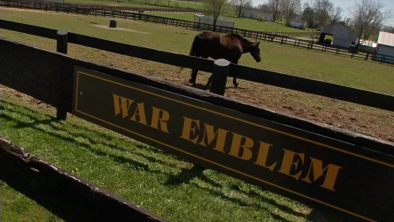 Old Friends Farm is home to many retired thoroughbreds including 2002 Kentucky Derby winner War Emblem.
