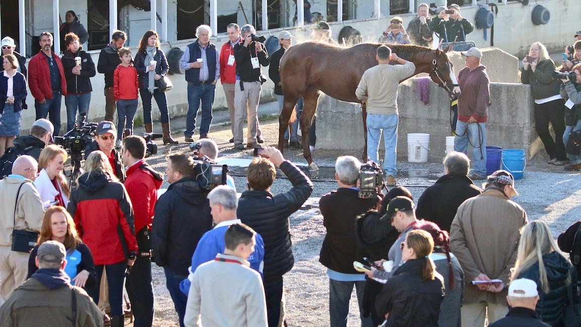 The crowds around Justify were large all week. (WDRB photo by Eric Crawford)