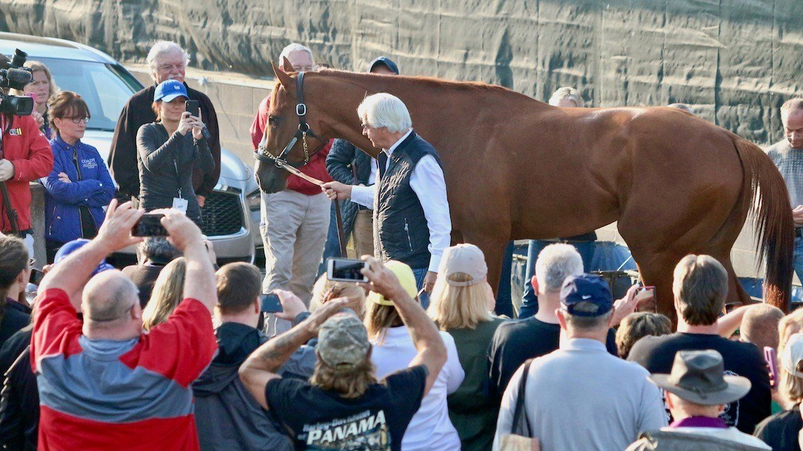 Bob Baffert gives media and spectators a quick glimpse of 2018 Kentucky Derby winner Justify the morning after winning the race. (WDRB photo by Eric Crawford)