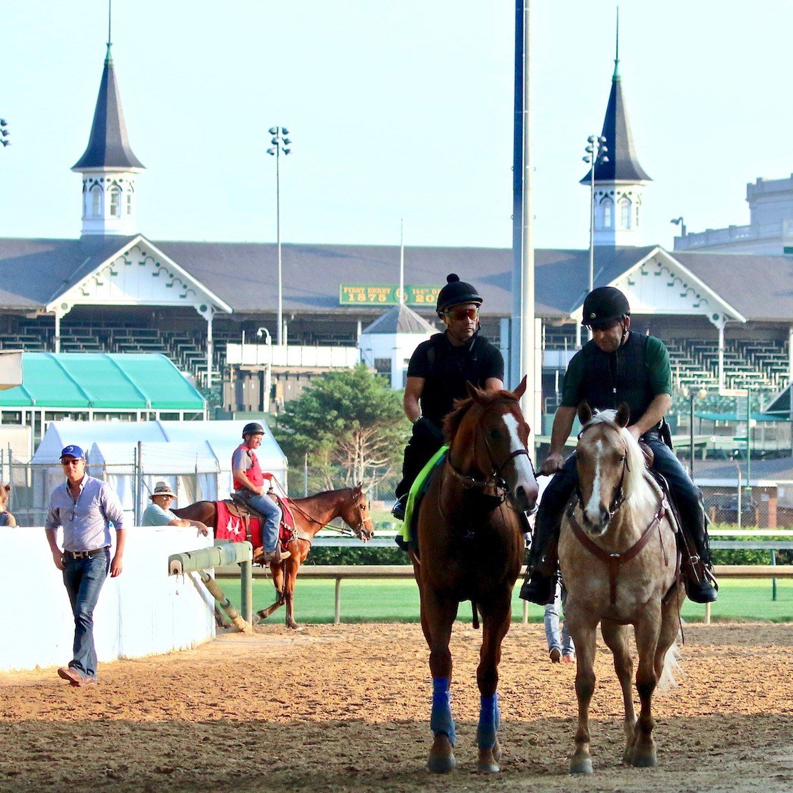 Justify heads off the track after galloping at Churchill Downs (WDRB photo by Eric Crawford)
