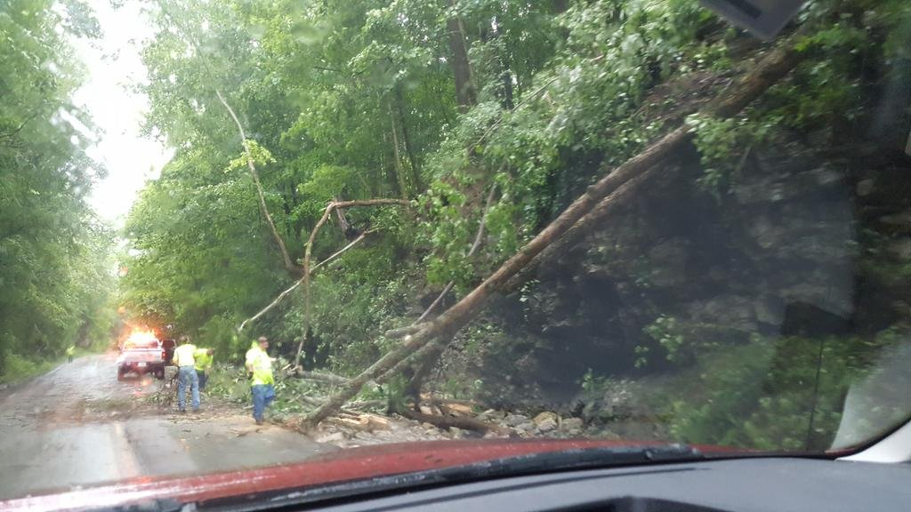 Trees were reported down in many areas, including in Oldham County and Goshen.