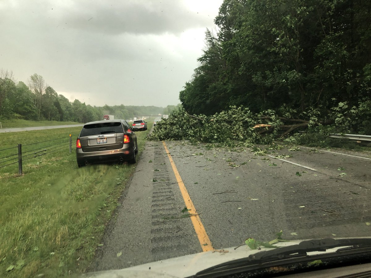 Part of I-65 was closed to remove a tree that fell near Henryville, Indiana.