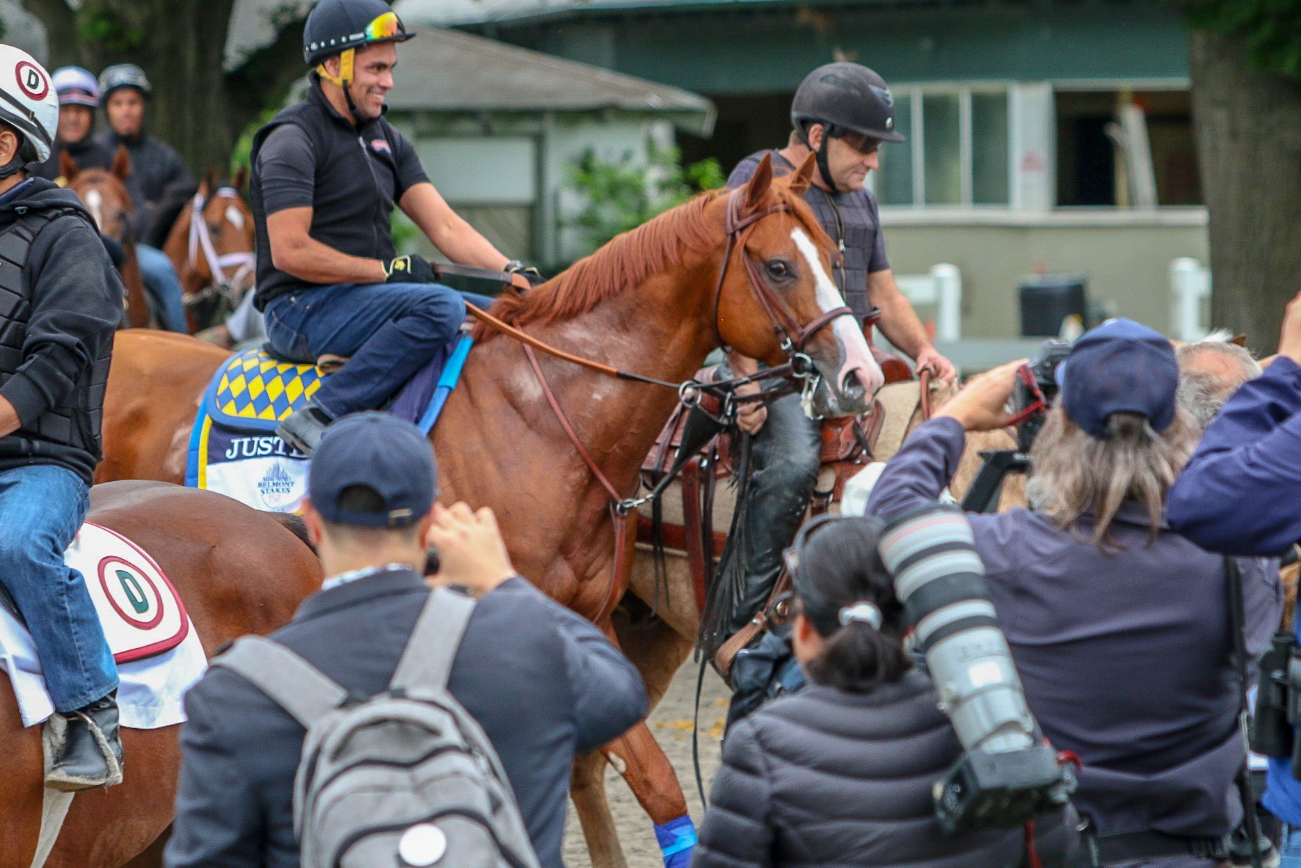 Justify walks past photographers back to the barn after galloping at Belmont Thursday. (WDRB photo by Eric Crawford)