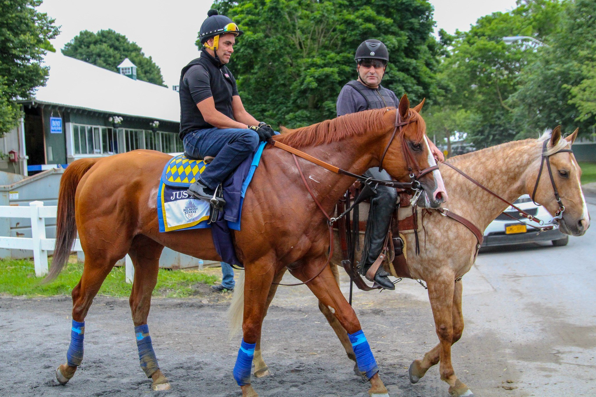 Justifly walks off the track after galloping at Belmont (WDRB photo by Eric Crawford)