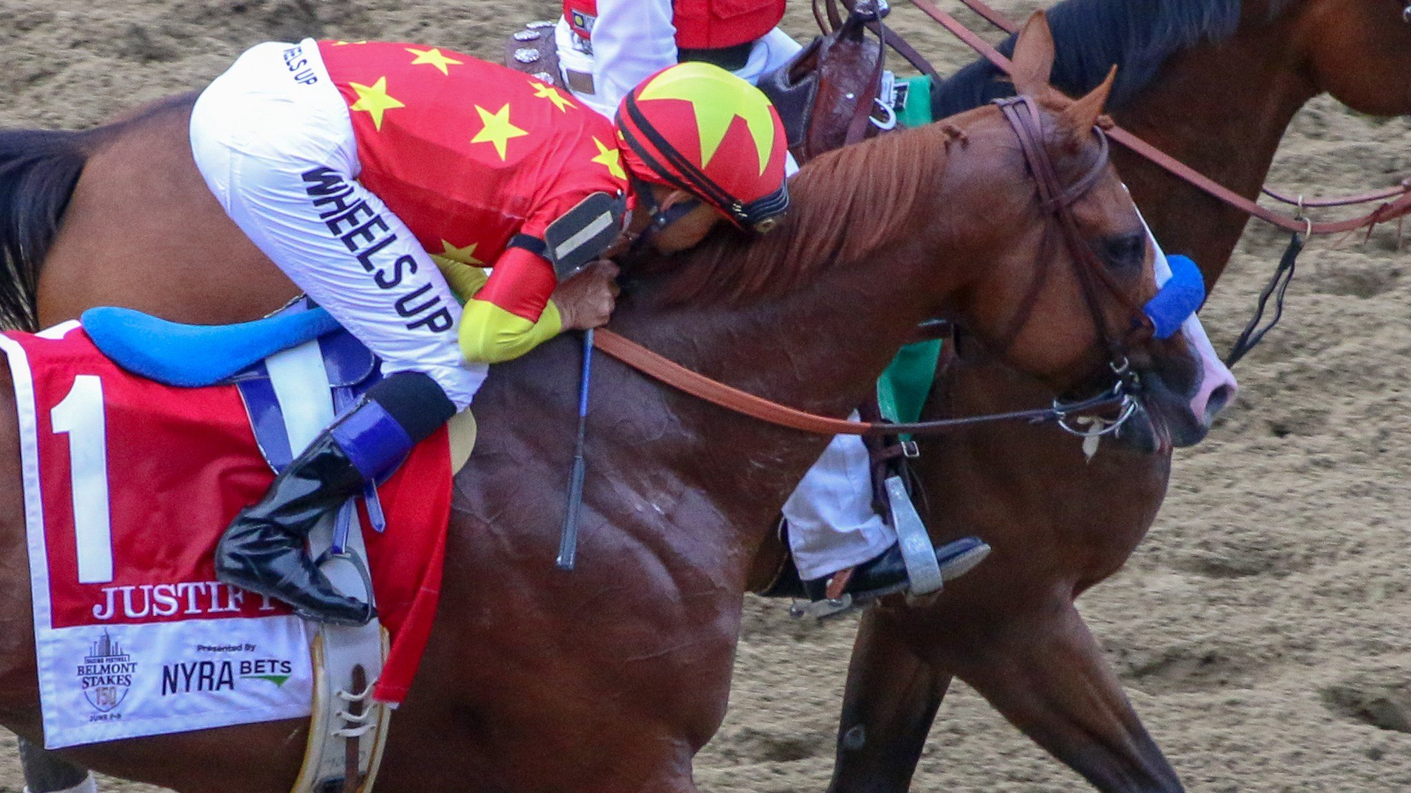 Jockey Mike Smith kisses Justify on his way to the Belmont winner's circle (WDRB photo by Eric Crawford)