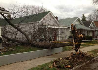 Lydia Street damage