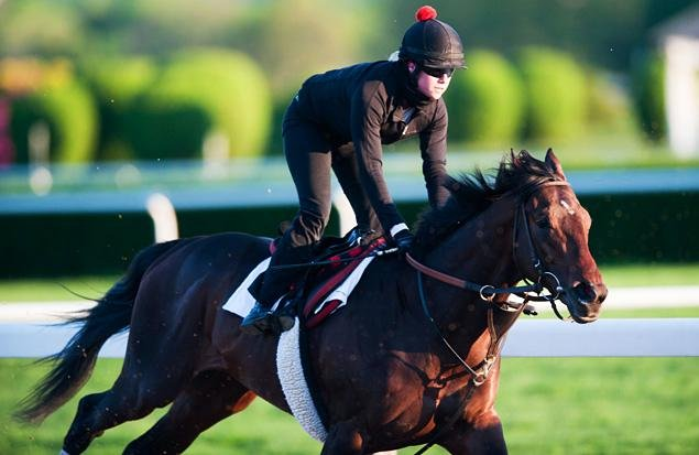 Kentucky Derby winner Orb puts an extremely impressive work Monday at Belmont Park, before going to Pimlico for Saturday's Preakness Stakes.