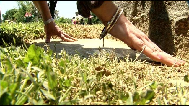 Bethany Memorial Cemetery, Resthaven and Evergreen cemeteries have all been hit by thieves.