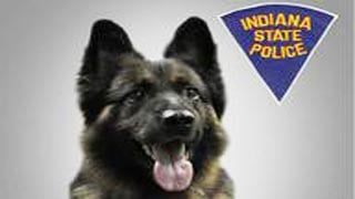 Kilo and his handler Nathan Abbot had served the Indiana State Police since January of 2007.