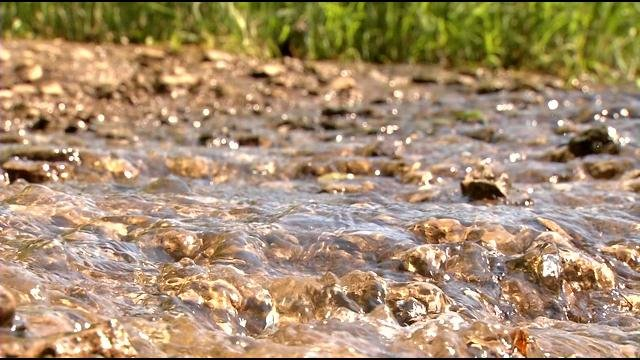Floyds Fork covers 162 miles, and parts of it are so polluted the pathogens in it could make you sick.