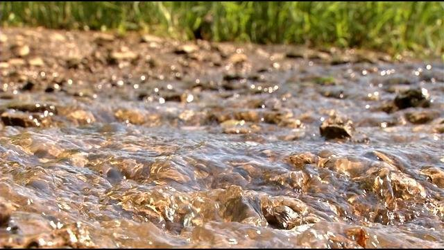 The public now has a few more weeks to comment on problems with bacteria in the Floyds Fork watershed.