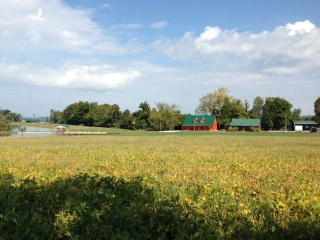 Rodney Bruce's property stretches 120 acres