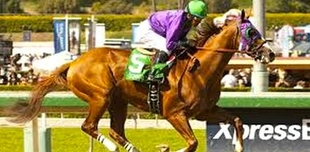 Kentucky Derby contender are eager to scratch California Chrome's record.