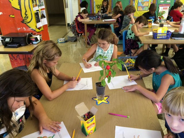 Fourth graders at the Brown School work on the first day of school.