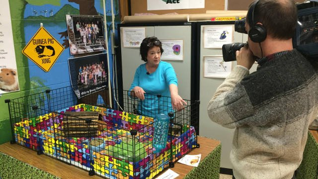 Judy Pollom, a teacher at Whitney Young Elementary School, talks to WDRB about taking care of the school's animals during snow days.