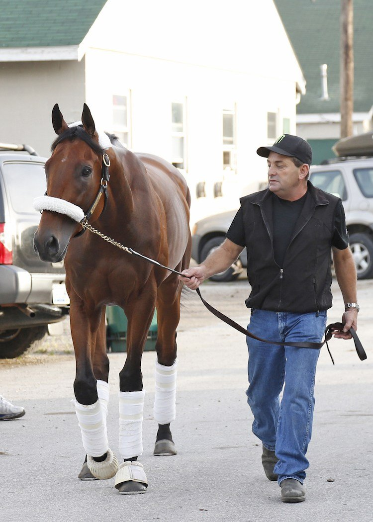 Assistant trainer Jimmy Barnes leads American Pharoah to the van. Churchill Downs photo by Reed Palmer Photography.