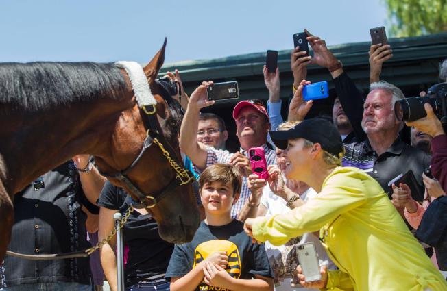 Fans greet American Pharoah at Santa Anita Park. AP photo.