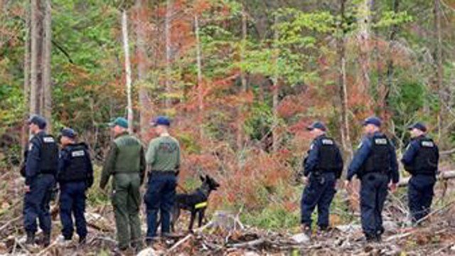 (AP Photo/Mark Lennihan). Corrections officers and a police dog start a search of woods near the Clinton Correctional Facility, Tuesday, June 16, 2015 in Dannemora, N.Y.