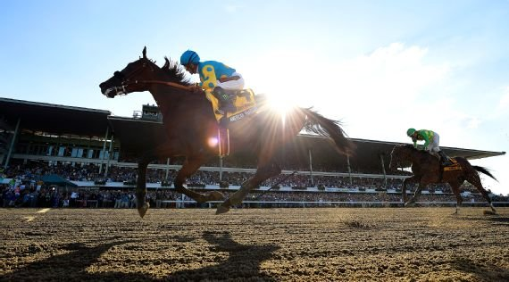 American Pharoah shined in the South Jersey sunlight, inviting speculation about where his next race might take place. Melissa Wirth/EQUI-PHOTO/AP