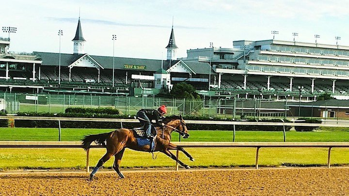 American Pharoah trains at Churchill Downs. (WDRB photo by Eric Crawford)