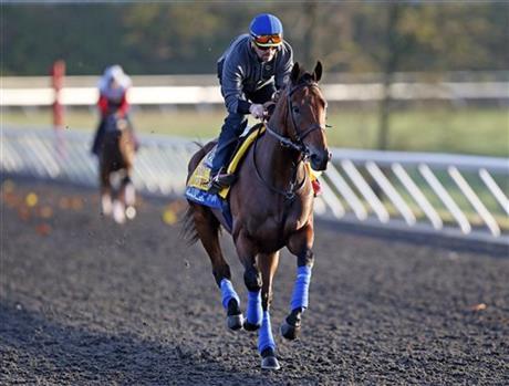 American Pharoah gallops at Keeneland. AP photo.
