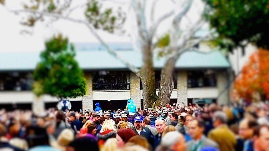 American Pharoah is swallowed up by the crowd as he heads to the track for the last time. (WDRB photo by Eric Crawford)