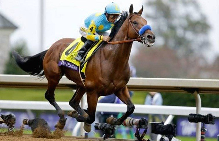 American Pharoah rolled to victory in the Breeders' Cup Classic. (AP photo)