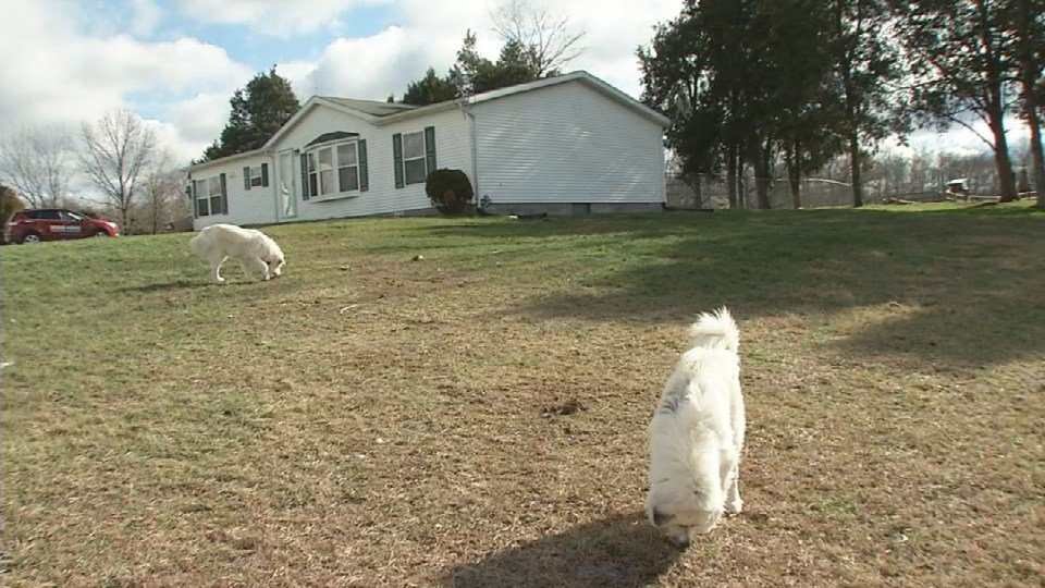 It happened in a rural area of Washington County but the family says the shots were fired only 45 feet from their front door.