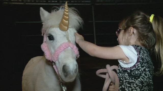 Juliet the 'unicorn' and her 5-year-old owner.