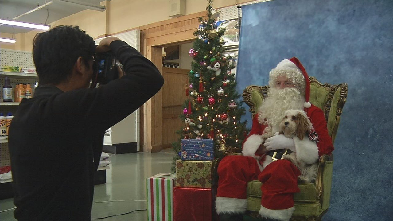 Feeders Supply Stores offering pet photos with Santa at all loca ...
