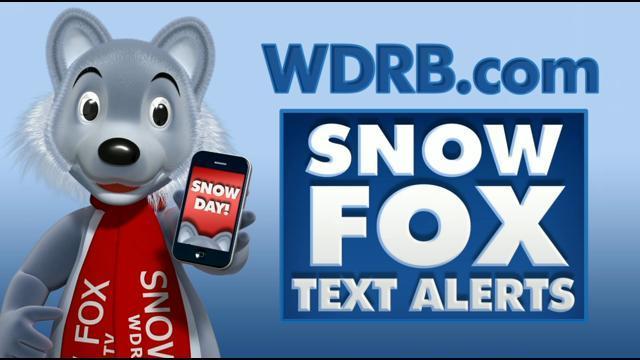 Snow Fox Text Alerts | Goldsmith Dolphins